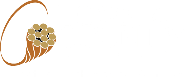 Town & Country Group Logo